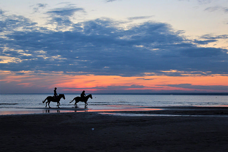 Silhouette people riding horse on beach against sunset sky