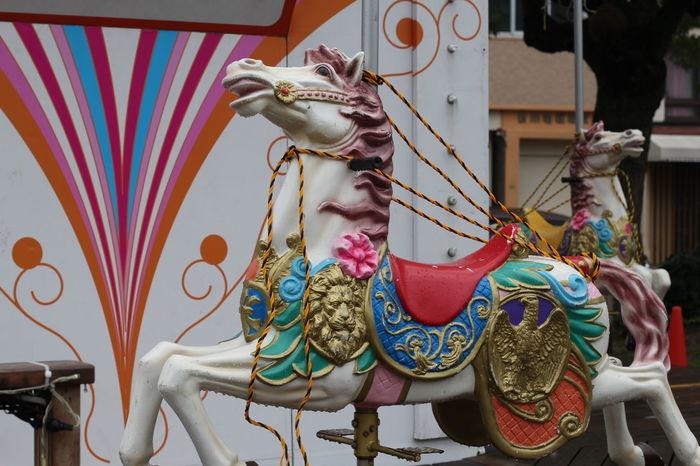 Bound  Horse Merrygoround The Purist (no Edit, No Filter)
