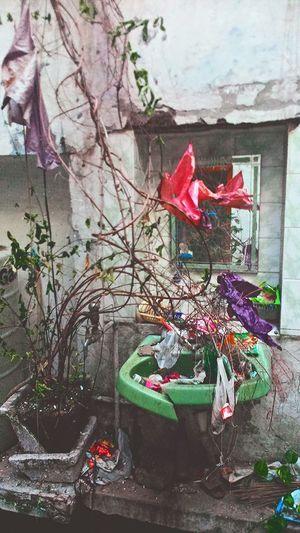 Mirroris show ur brain Delhi6 AT. Rooftop Washroom Artistic Photo Morning Sky Morning Light