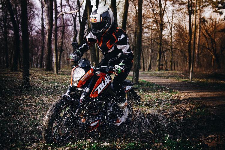 Tree Motocross