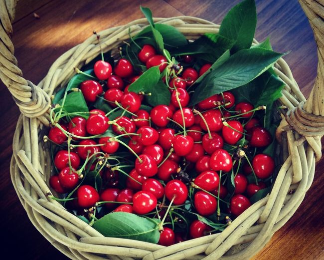 As cerejas do meu jardim. / Les cerises de mon jardin. 🍒🌳🌸🌞 Basket Freshness Healthy Eating Red Food And Drink Food High Angle View Fruit Vegetable No People Abundance Leaf Close-up Nature Outdoors Cherry Cerise
