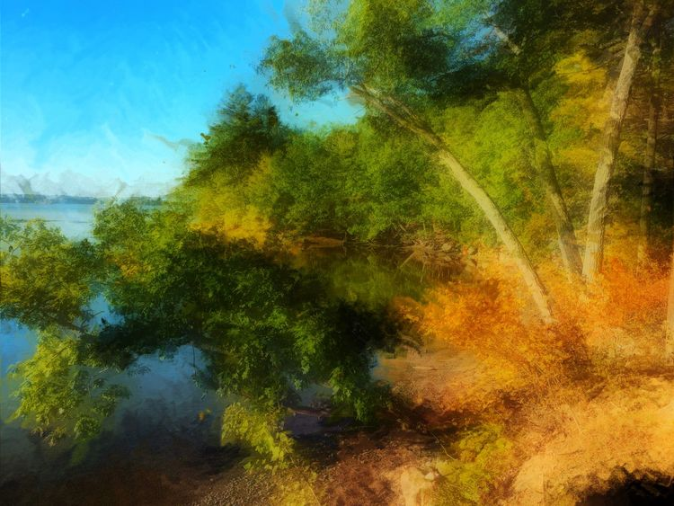 Enlight Artistic-painting Like A Painting Fall Colors Taking Photos Maine Carol Sharkey Photography