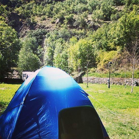 Despres de dinar,relaxing in the mountain. Bacaina Ilovemountains Lamontanyadetor