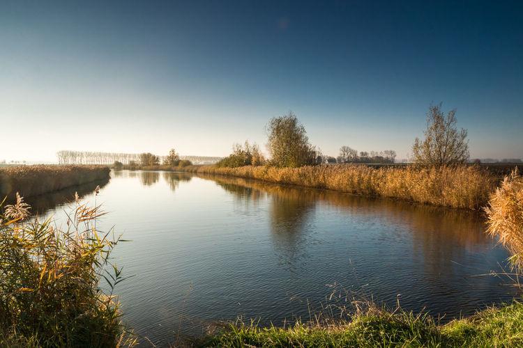 Drainage channel Nol Zeven, near Biervliet Getty Images EyeEm Market © EyeEm Premium Collection Water Plant Tranquility Drainage Channel Scenics - Nature Clear Sky Reflection Landscape Zeeuws Vlaanderen Zeeland  The Netherlands