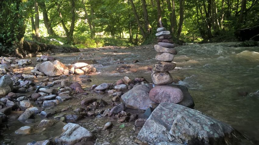 Beauty In Nature Day Forest Nature No People Outdoors Rock - Object Scenics Sculpture Statue Tranquility Tree