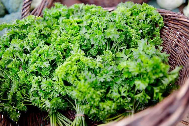 Parsley Healthy Eating Organic Food Outdoors Market Market Stall Green Color Plant Freshness Food Food And Drink Growth Healthy Eating Herb Wellbeing Vegetable No People Plant Part Leaf Day Nature Close-up Selective Focus Leaf Vegetable High Angle View