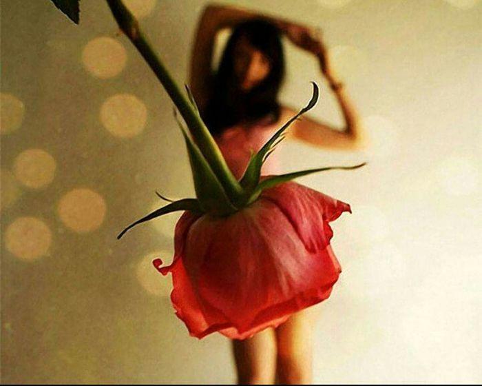 Fiore Rosa Donna Ballo Bailar Love Italy Luci Teenager Dancing