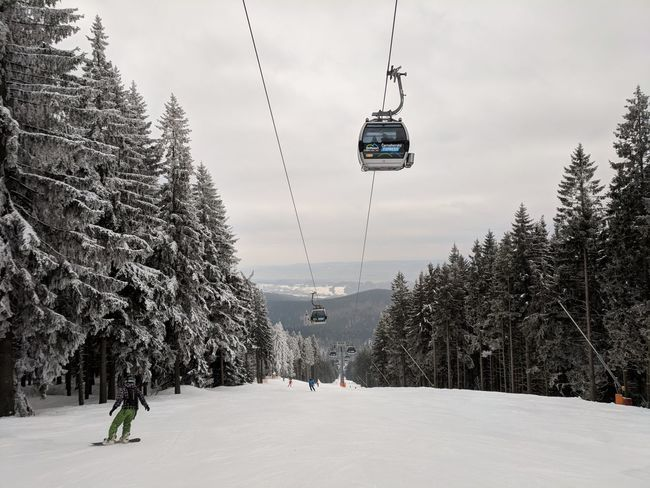 Cold Temperature Winter Overhead Cable Car Tree Nature Real People Snow Leisure Activity Adventure Sky Ski Lift Scenics Beauty In Nature Hanging Lifestyles Large Group Of People Men Day Vacations Outdoors Travel Destinations Sport Mountain Extreme Sports People F/2.0 Google Pixel via Fotofall
