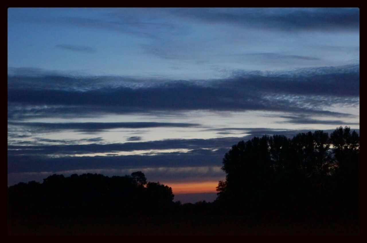 silhouette, nature, sky, tree, scenics, beauty in nature, landscape, sunset, no people, outdoors, forest, scenery, night