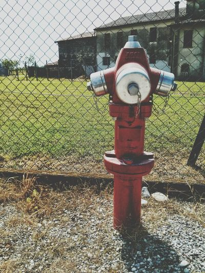 TheMinimals (less Edit Juxt Photography) Fire Hydrant Steph Filter