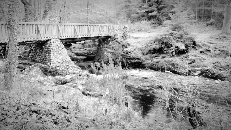 Bridge Tollymore Forest Park Nature Photography Riverwalk Beauty In Nature Northern Ireland Game Of Thrones Film Set
