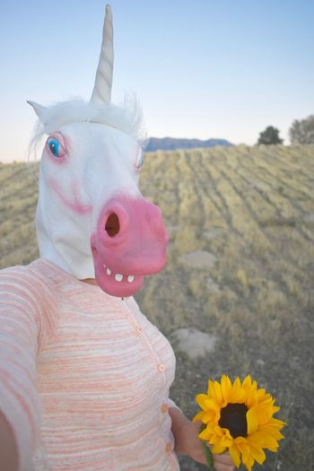 Model wearing magical fantasy unicorn horse head mask smiling face be a Unicorn Field Funny Holding Flower Unicorn Woman Costume Costumes Fashion&love&beauty Field Background Happy Faces Horse Head Introverted Mask Mask - Disguise One Person Outdoors Popular Photos Rainbows And Unicorns Self Image Concept Selfie Unicorn Head Unicorn Head Unicorns Wearing Horse Mask White
