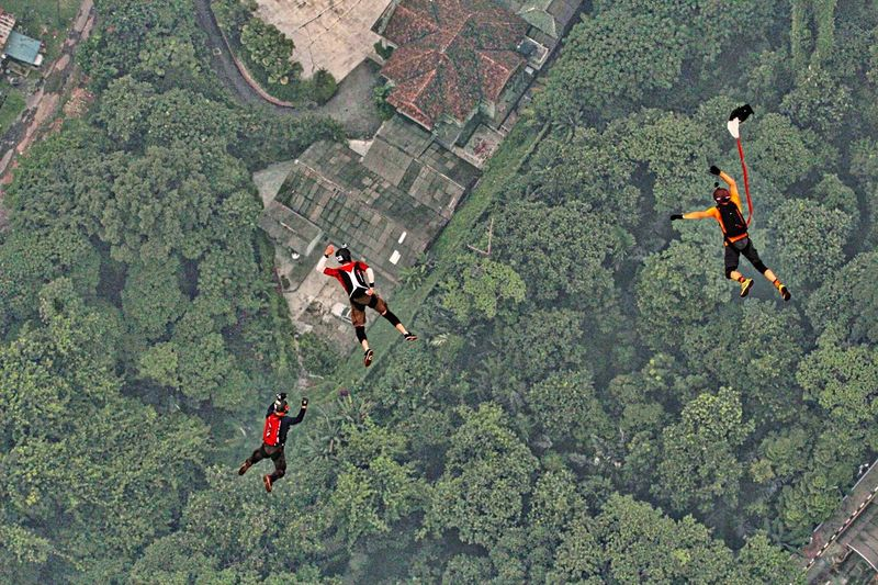 Aerial view of skydivers over trees
