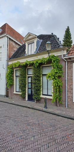 Dutch Home