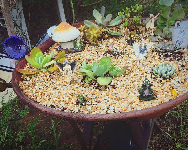Doghairstudio Creative Gardening Wheelbarrow Garden Gypsy Girl