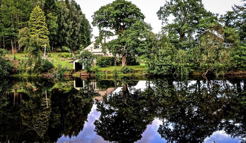 Beauty In Nature Green Color Nature Reflection Reflection Reflection In The Water Reflection River Scotland Scotland 💕 Scotlandsbeauty Tranquility Tree Water