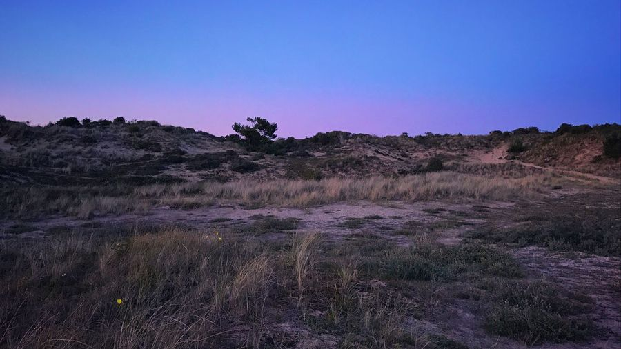 Nature No People Landscape Tranquil Scene Tranquility Outdoors Beauty In Nature Clear Sky Scenics Grass Day Sky Dune Mountain EyeEm Nature Lover EyeEm Best Edits EyeEm Best Shots - Landscape EyeEm Best Shots - Nature Travel Blue