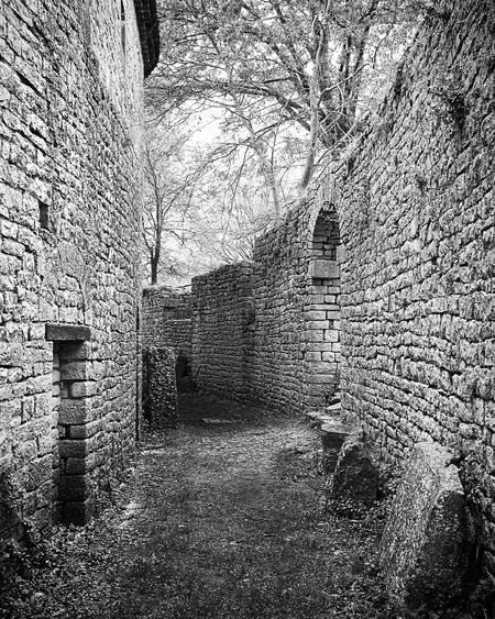 Sepino Roman Ruins Architecture Bare Tree Bnw Brick Wall Building Building Exterior Built Structure Day History Italy Italy❤️ Nature No People Old Outdoors Plant Roman Roman Architecture Sepino Stone Wall The Past Tree Wall Wall - Building Feature