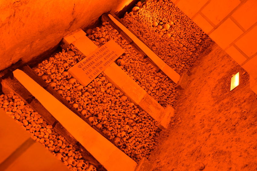 Bones Darkness Paris Paris, France  Sightseeing Travel Traveling Available Light Bone  Catacomb Catacombe Catacombs Hq Iso100 Katakomben Knochen Scary Scary Places Sceleton Schädel Skull Skulls Skulls And Bones Travel Destinations Under The City The Photojournalist - 2018 EyeEm Awards
