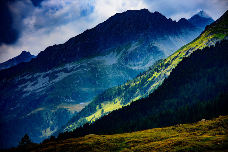 Adamello Brenta Beauty In Nature Cloud - Sky Day Fir Forest Forest Landscape Mountain Mountain Range Nature No People Outdoors Scenics Sky Tranquil Scene Tranquility