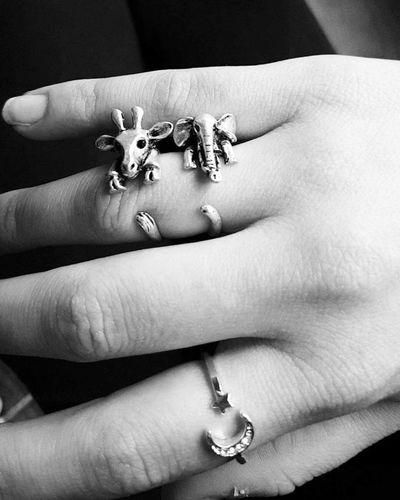 Rings Animals