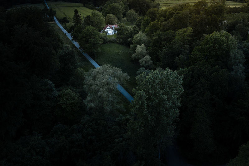 High angle view of trees at night