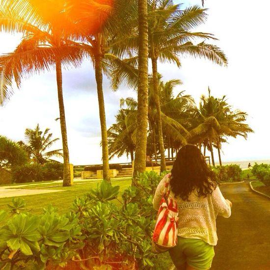 Holidays Sun