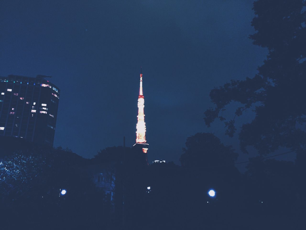 architecture, tower, built structure, night, tree, low angle view, illuminated, building exterior, communication, outdoors, sky, no people, travel destinations, city