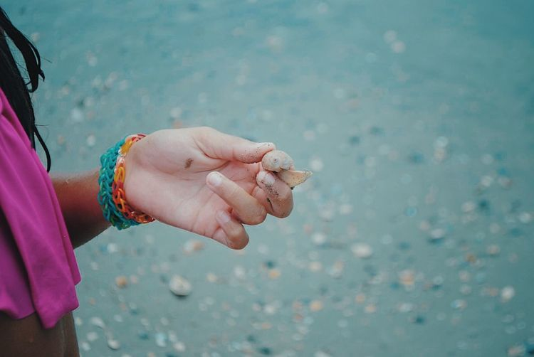 Cropped image of woman holding seashell at beach