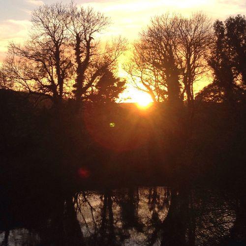 No Filter Nature Sunset Sun Tree Sky Sunlight Sunbeam Beauty In Nature Tranquility Scenics Outdoors Silhouette Eyeemphoto EyeEm Gallery Pembrokeshire Evening Winter Rays First Eyeem Photo Mill