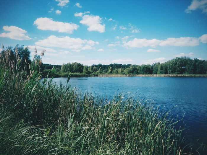 Lake Water Nature Beauty In Nature Scenics Outdoors Sky No People Tree Grass EyeEm Best Shots VSCO EyeEm Best Edits Landscape Sky And Clouds