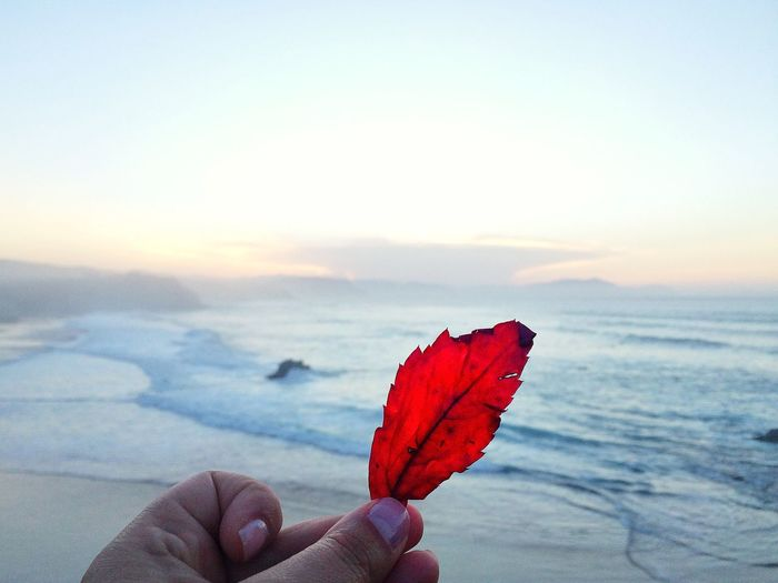 ___No debería y sin embargo, seco mi boca abrazando tus labios.___ El Peñón/Sopela (Bizkaia) Otoño Seaside EyeEm Nature Lover IPhoneography