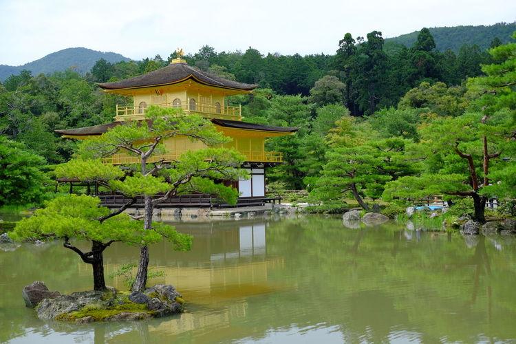 金閣寺 At 鹿苑寺(金閣寺) Kinkaku-ji Temple Fujifilm Fujifilm X-E2 Japan Kinkakuji Kyoto Temple 京都 寺 金閣寺