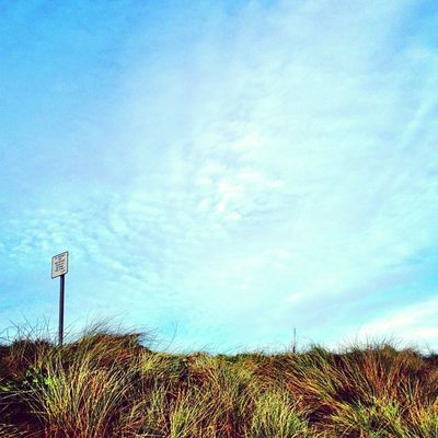 Landscape #amaro #autumn #all_shots #jj #ireland #insta_ireland #insta_ireland_autumn Autumn Ireland All_shots Jj  Amaro Insta_ireland Insta_ireland_autumn