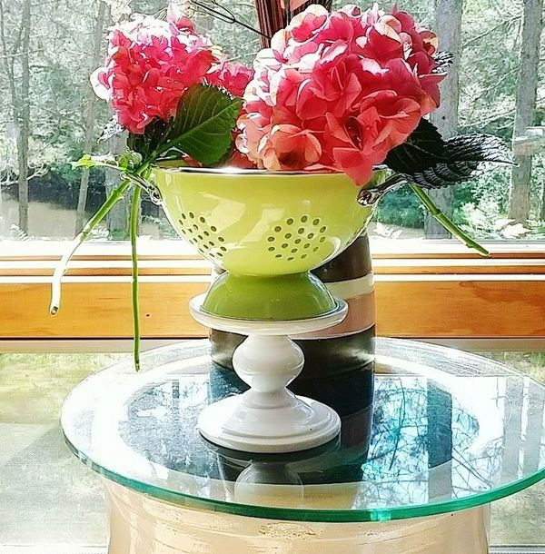 Indoors  Vase Plant Day No PeopleFlower Head Jar. Growth Flower Nature. Freshness Close-up EyeEmNewHere Flower Table colander pantone2017 Outside My House Outside_my_window Outside My Window Riverfront Riverview Riverbank View
