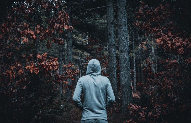 Rear view of man standing amidst leaves in forest