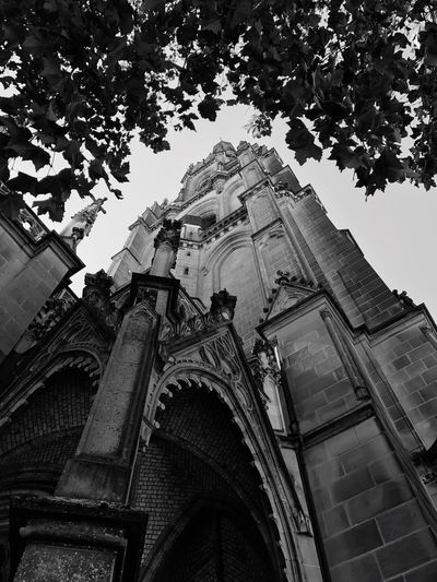 Linz Mariendom Low Angle View Architecture Religion Building Exterior Spirituality Built Structure History Outdoors No People Place Of Worship Day Tree Statue Sky