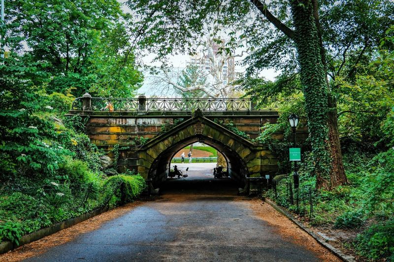 Central Park - NYC Central Park Bridge Built Structure No People Green Color Nature Direction Outdoors New York City Park