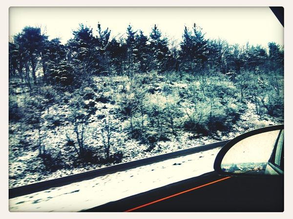 Snowscape. Trees On The Road Snow Check This Out Winter Trees Drive By Shooting NeverLookBack