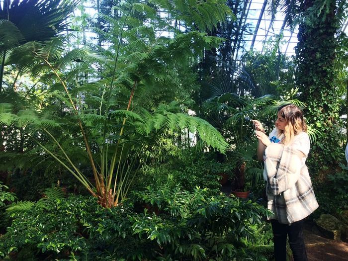 I'm at work when inspired Branch Botanical Gardens Beauty In Nature Botanical Garden Green Garden Botany Brake At Work Inspired Inspirational Nature Lover Blossom Going Remote Tree Young Women Standing Casual Clothing Fern Frond Growing Palm Frond Palm Leaf Young Plant Plant Life Palm Tree Stalk Blooming Flower Head Fungus