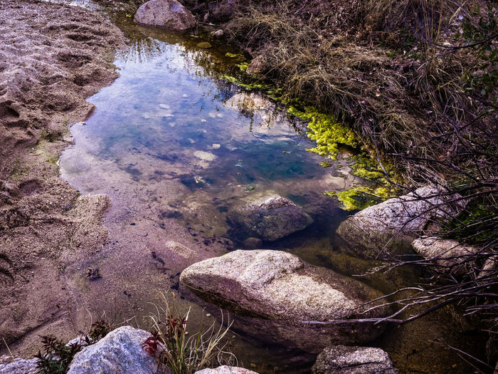 Beauty In Nature Day Elevated View Full Frame Grass Green Color Growth Idyllic Nature No People Non Urban Scene Non-urban Scene Outdoors Plant Reflection Remote Rock - Object Scenics Standing Water Stone - Object Stream Tranquil Scene Tranquility Tucson Arizona  Water