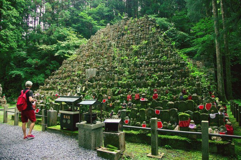 Kouyasan 高野山 Japan Kouyasan Japan Scenery Landscape Temple Cemetery Forest Trip Photo Japan