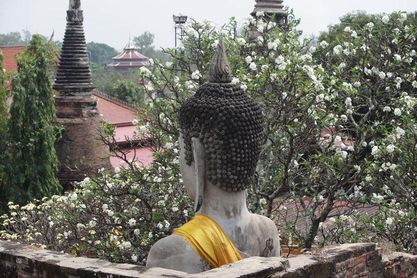 ASIA Ayuthaya Ayutthaya Landmark Ruin Southeastasia Temple Thailand Travel Water