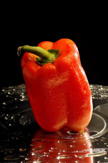Close-up of wet red bell pepper against black background