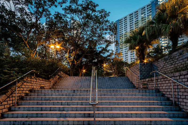 ASIA Hong Kong Sha Tin Architecture Built Structure Low Angle View No People Outdoors Railing Staircase Steps Steps And Staircases Tree