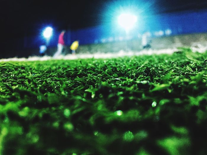 Outdoors Football Night Green Color Surface Level Illuminated Grass Field Nature Beauty In Nature Close-up