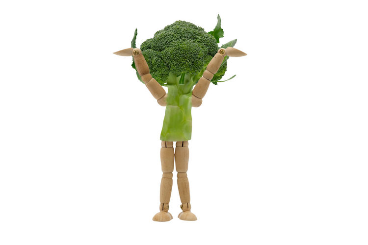 Cut Out White Background Green Color One Person Child People Studio Shot Adult Girls Human Body Part Childhood Healthy Eating Portrait Nature Children Only Space Freshness Day Brocolli Dummy Vegetable Health