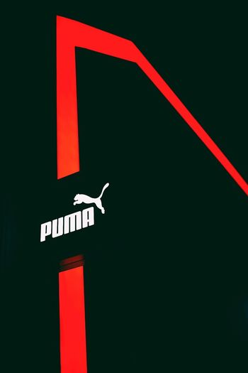 Puma looking very Pretty neon Arrow Symbol Guidance Direction Exit Sign Communication No People Road Sign Illuminated Neon Outdoors Parking Garage Day Close-up Puma Cape Town