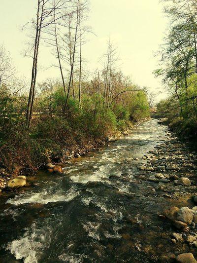 River Stones Mountain Landscape
