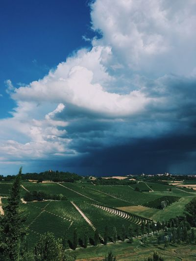 Storm over a town in Italy. Blue Sky Blue Sky And Clouds Clouds Farmland Hot Italy Landscape Rain And Sunshine Storm Storm Cloud Summer Summer Storms Town Vineyards